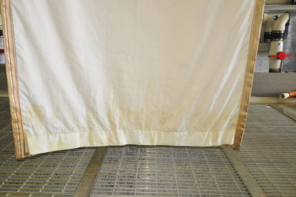 Cat Urine Odor Removal From Silk Drapery Petpeepee