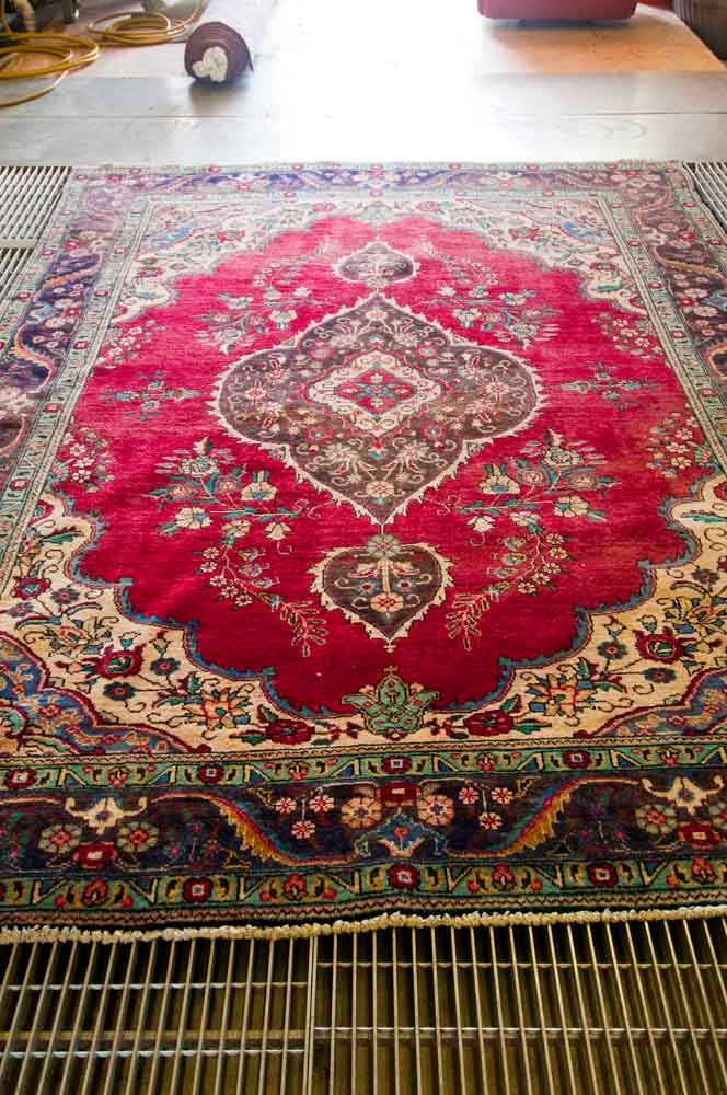 Cleaning Antique Oriental Rug From Cat Urine Odor By