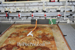 The XpetPee Oriental rug cleaning