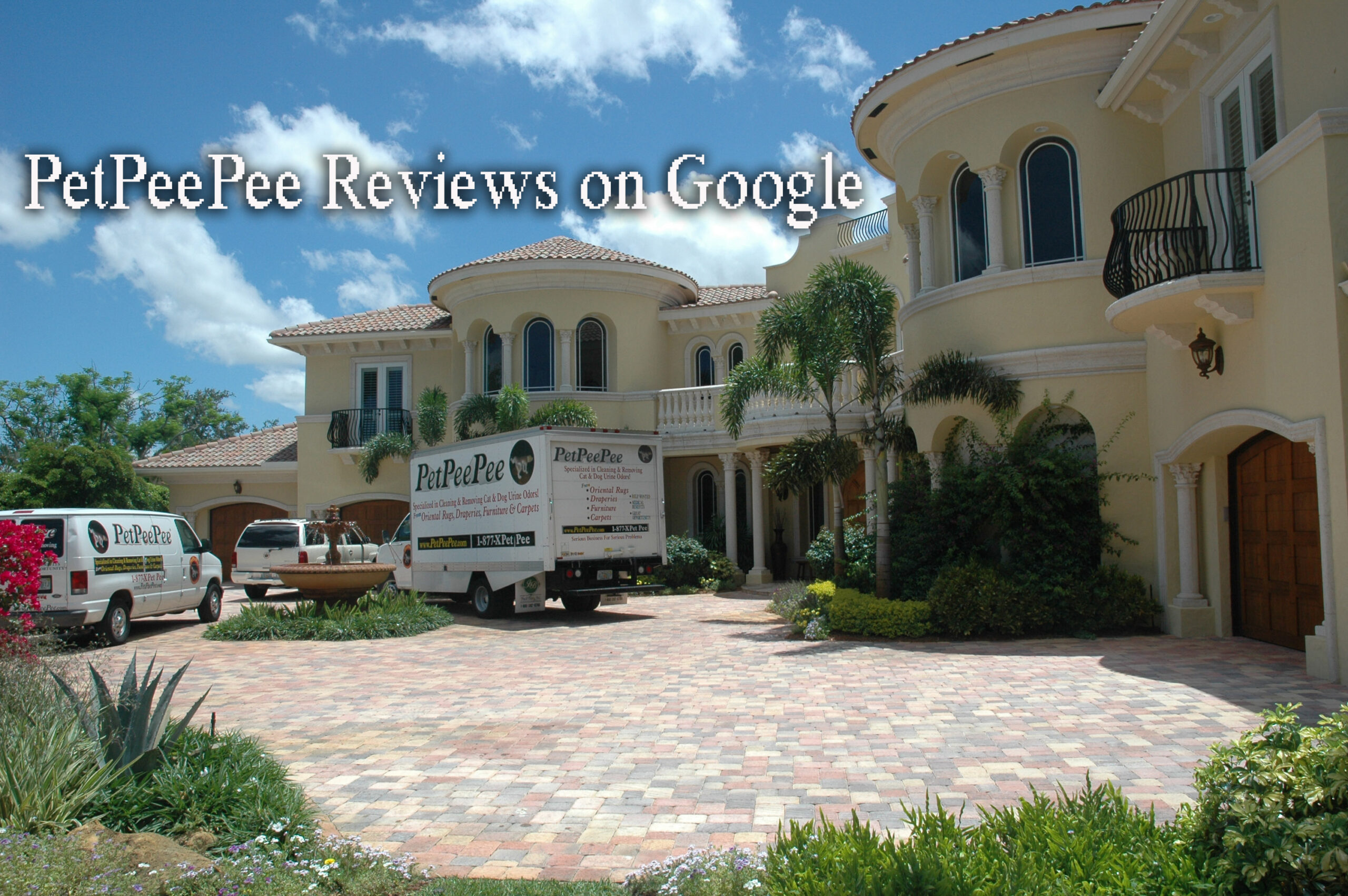 PetPeePee review on Google