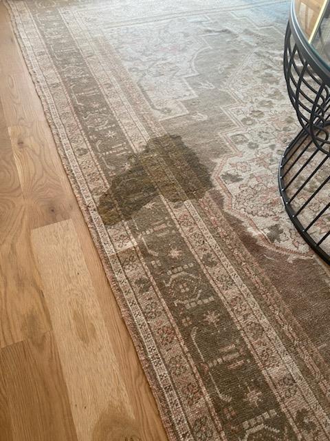 Dog diarrhea on antique Oriental rug
